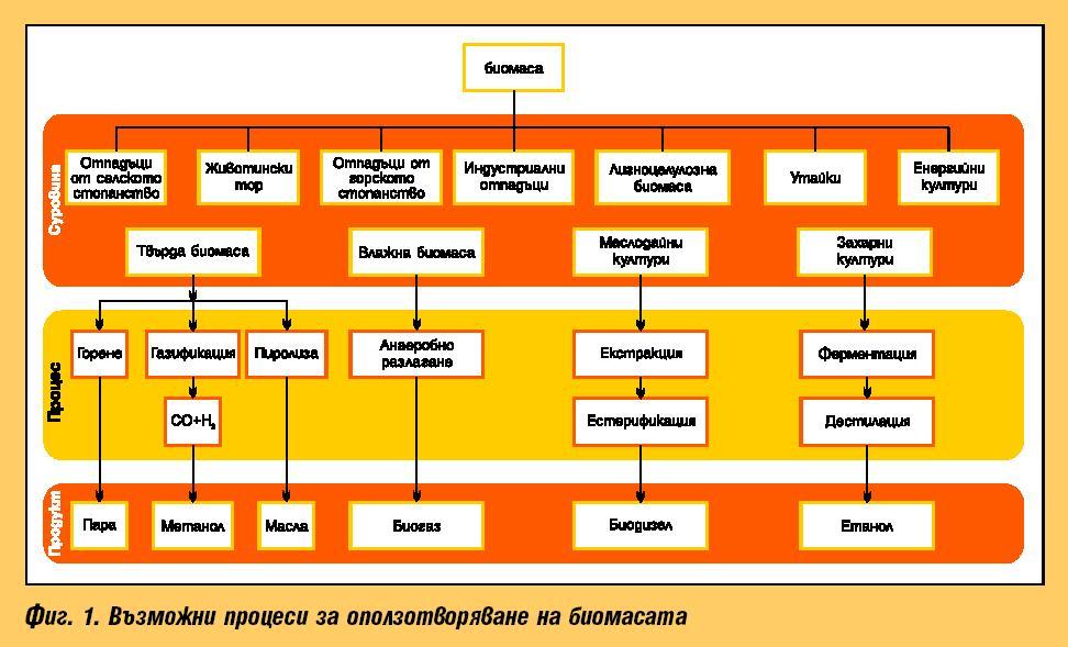 Производство на електроенергия от биомаса